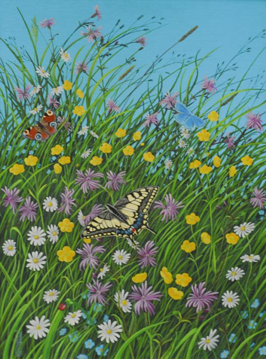 Gräser, Schmetterlinge, Natur, wiese, ziegenfeuter, Illustration, Dortmund